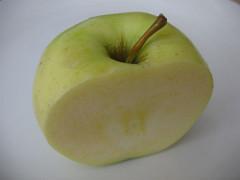 dixon apples 035