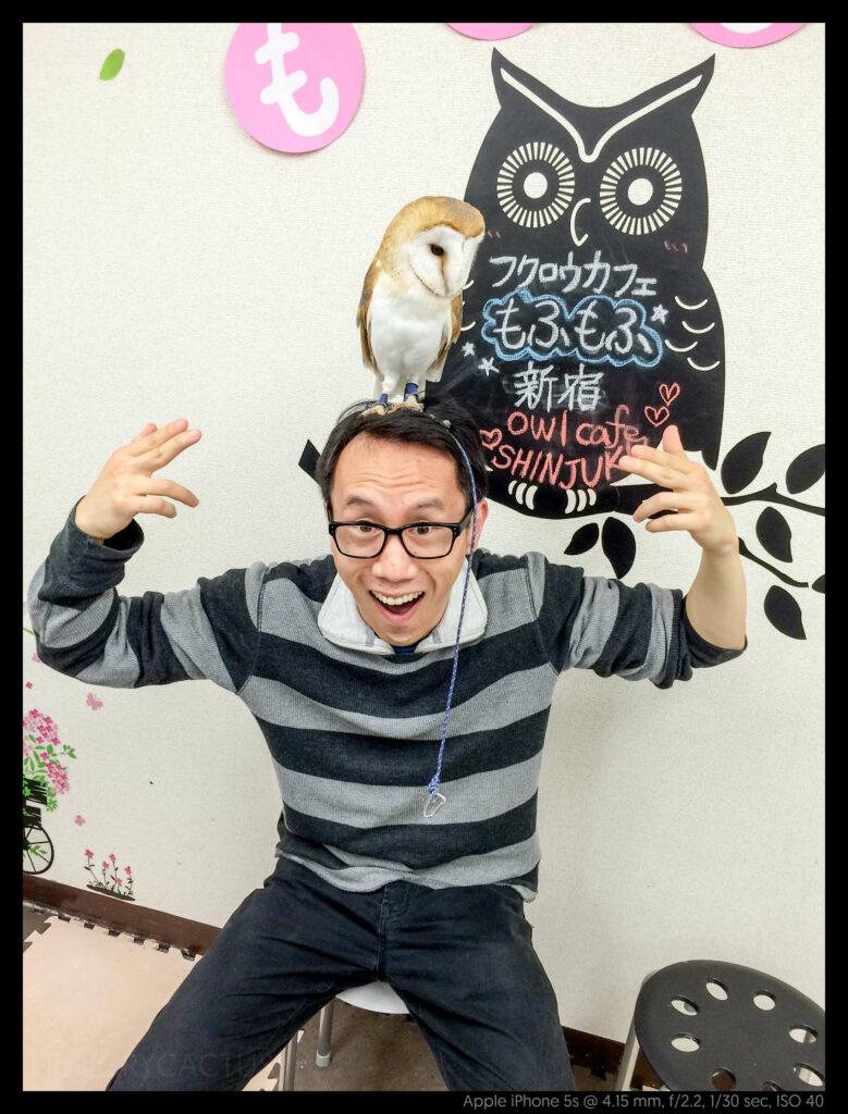 owlcafe (4 of 14)